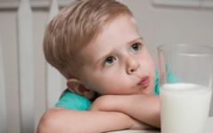 Por que vegetarianos e veganos não consomem leite e ovos? Veja a crueldade por trás